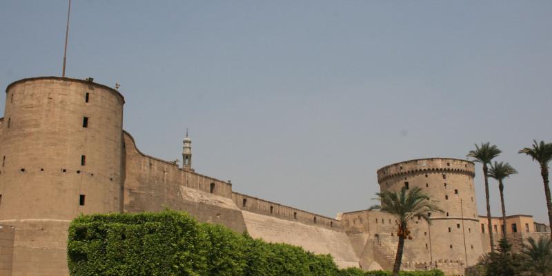Tree-Citadel-Cairo-Egypt