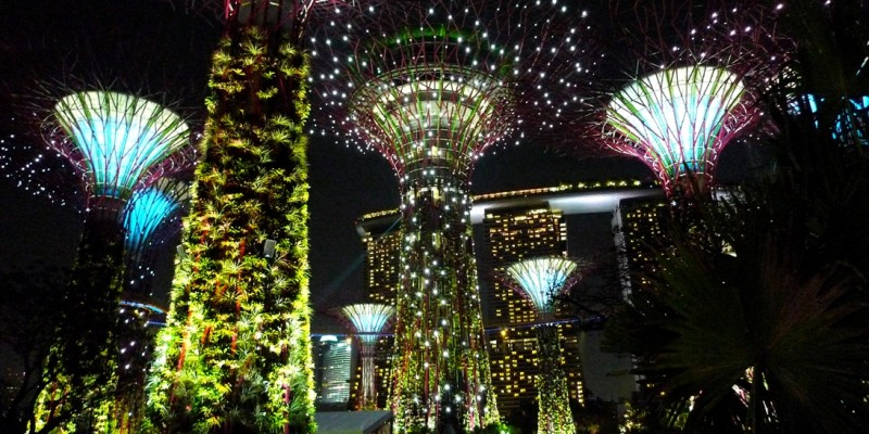 Supertree_Grove,_Gardens_by_the_Bay,_Singapore_b